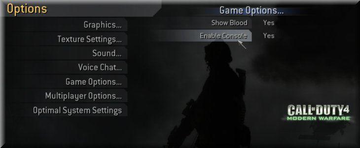 Call of Duty 4 Ayarlar