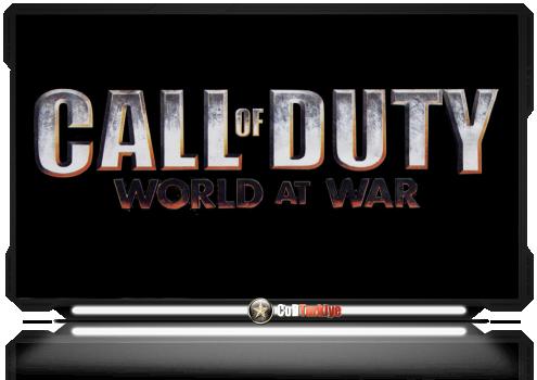 Call of Duty 5 World at War Profil Yedekleme Level Yedekleme