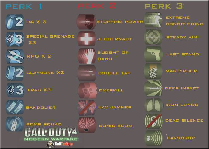 Call of Duty 4 Modern Warfare Perk