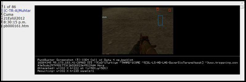 Call of Duty 4 Punkbuster Screenshot Wallhack