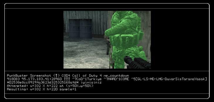 Call of Duty 4 Skin