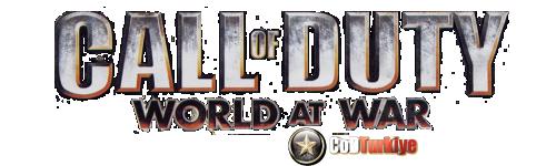Call of Duty 5 World at War Hataları, Sorunlar ve Çözümleri
