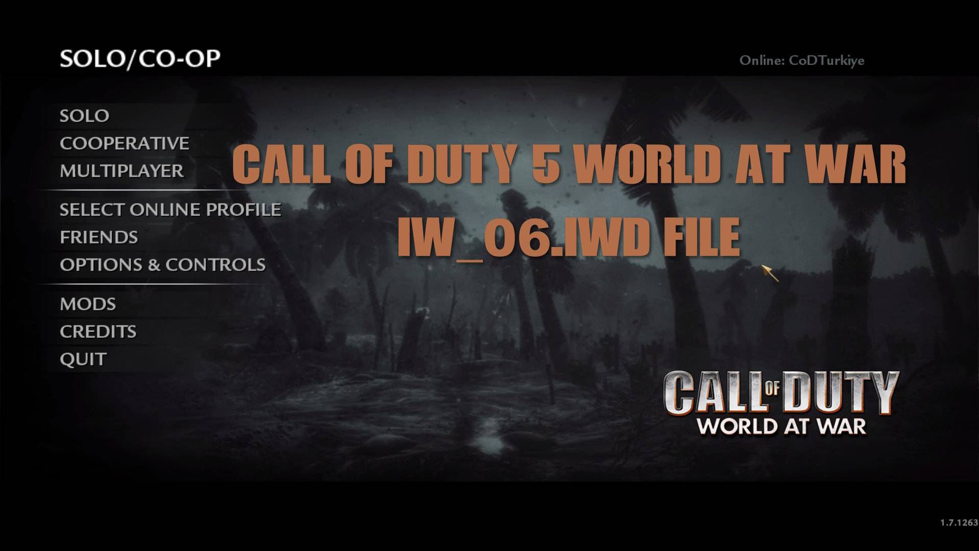 Call of Duty 5 World at War iw_06.iwd File Download