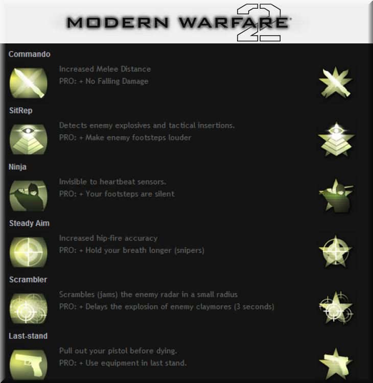 Call of Duty 6 Modern Warfare 2 Perkleri Slot 3