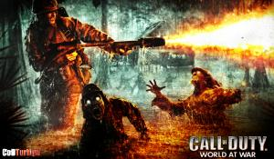 Call of Duty 5 World at War Sistem Gereksinimleri minimum CoD5