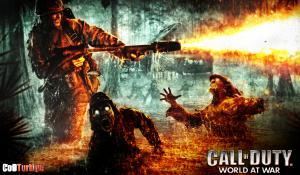 Call of Duty 5 World at War Sistem Gereksinimleri minimum CoD5